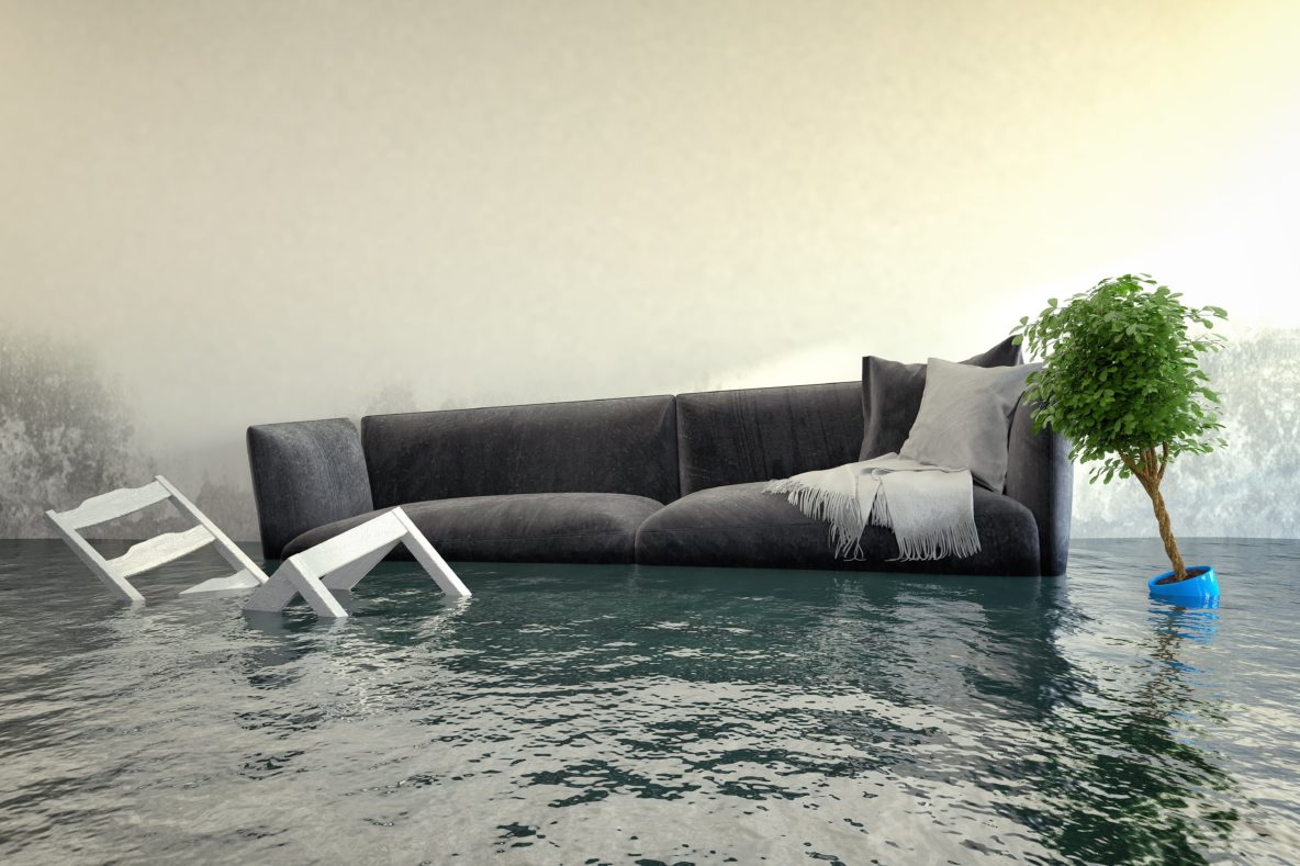 Preventing Water Damage in Burley Idaho