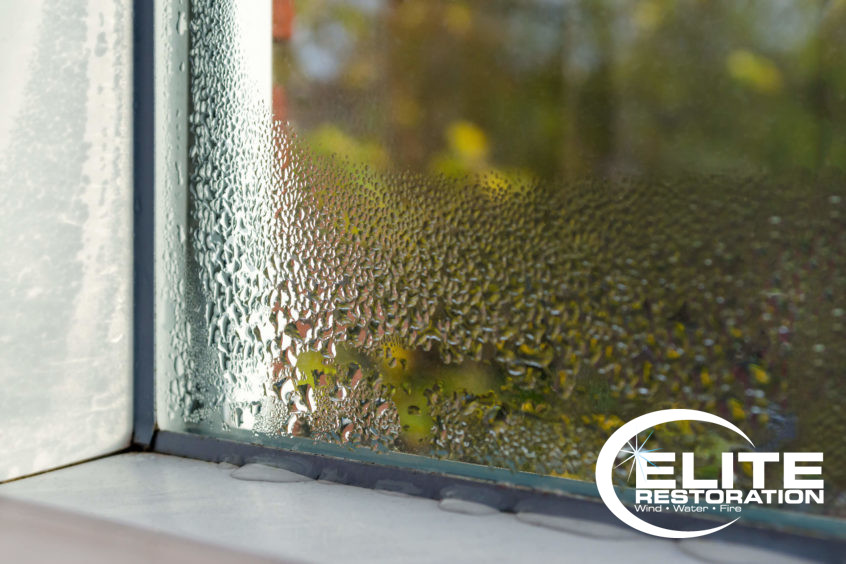 A clean window well with condensation on the outside with some water leaking through to the inside. Clean window wells help keep out the elements and make necessary escape safer and easier.